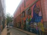 Lots of graffiti/street art in Valparaiso.